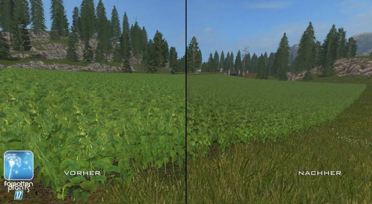 forgotten-plants-soybean-v1-0_6